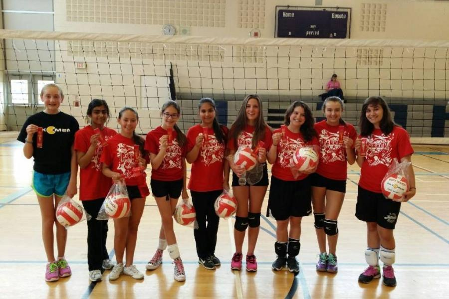 Volleyball players in the development league program