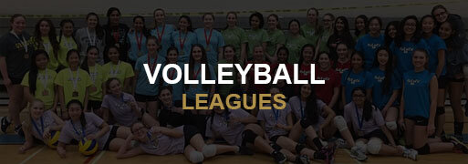 Volleyball Leagues Banner